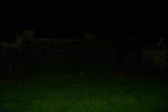Orb near wall in Garden